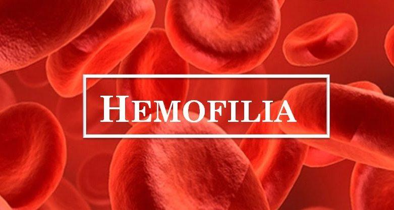 Saiba mais sobre a hemofilia